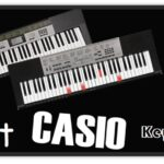 Top 10 Best Casio Keyboard & Digital Piano Reviews for 2020