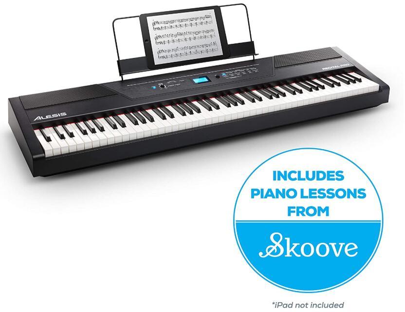 beginner portable piano