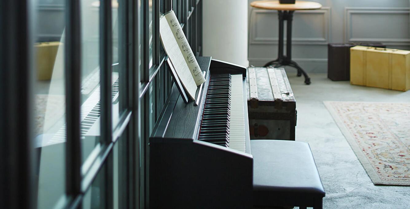 Casio privia px 870 piano